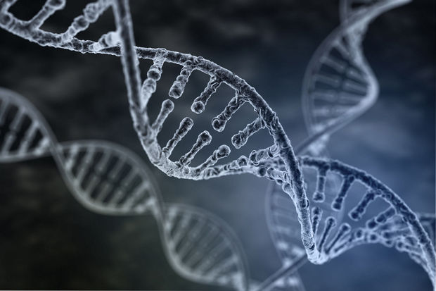 """Chinese DNA-database dreiging voor privacy"""